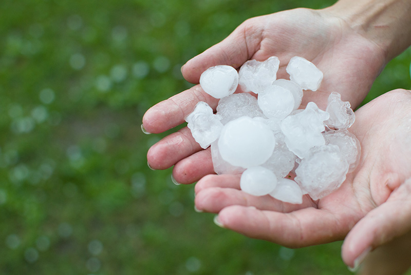 Person holding hail in hands after hail damage to their business